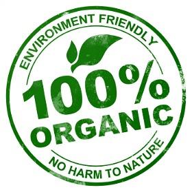 Environmental Friendly Lawn Care