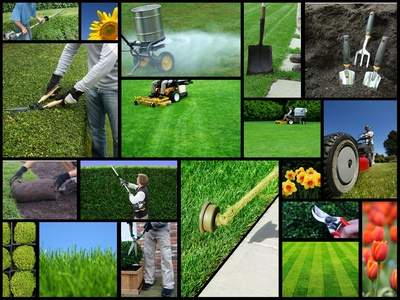 Lawn Maintenance Collage